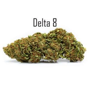 Elektra Delta 8