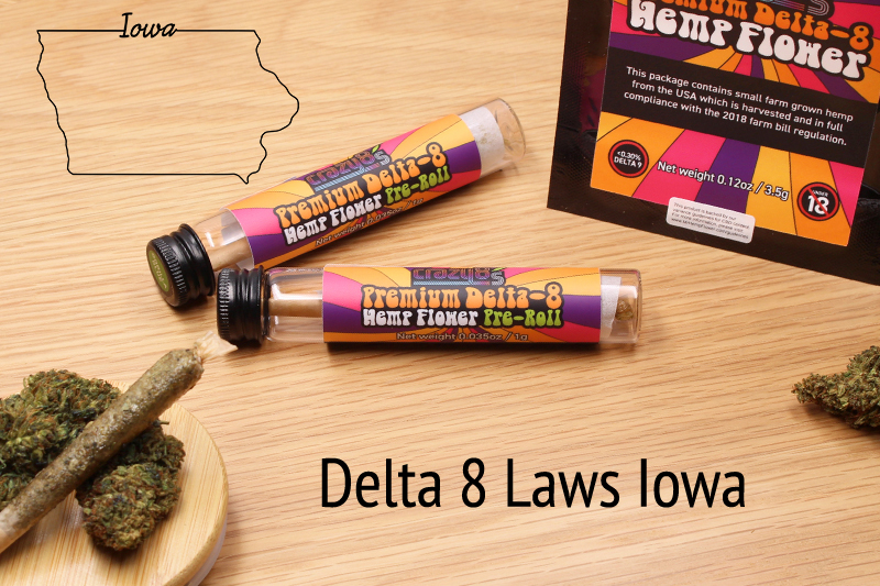 Delt 8 Iowa